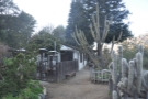 Before I left, I looked around the garden, which was at the south end of the property...