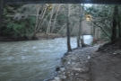 ...and go for a short walk. This is the view upstream...