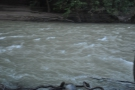 The river, with all the winter storms, was fast flowing and close to bursting. There's a...