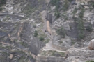 A little further on, you can see the start of the Bright Angel Trail, cutting along the side...