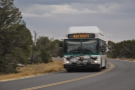 Here comes a bus! They are free, but be aware that other than Powell Point...