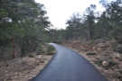 Sometimes the Rim Trail is well surfaced, like it is here, and is wheelchair accessible.