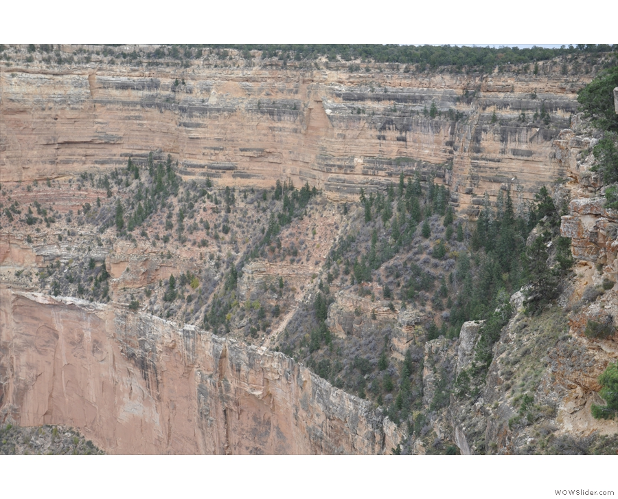 Just for scale, those are full-sized trees growing on the cliffs!