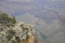 ... the valley that the Bright Angel Trail follows. The wooded area in the foreground...