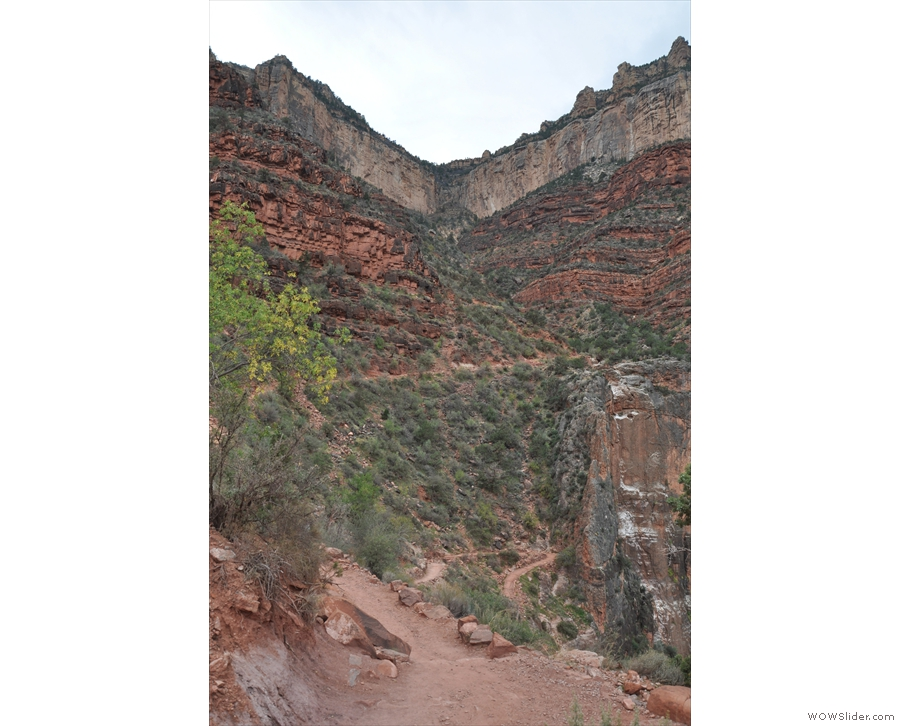 ... to the right will take me back down to Indian Garden, while the left returns to the rim.