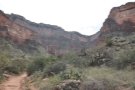 Pretty much all of the Bright Angel Trail is in this shot, from the path at my feet...