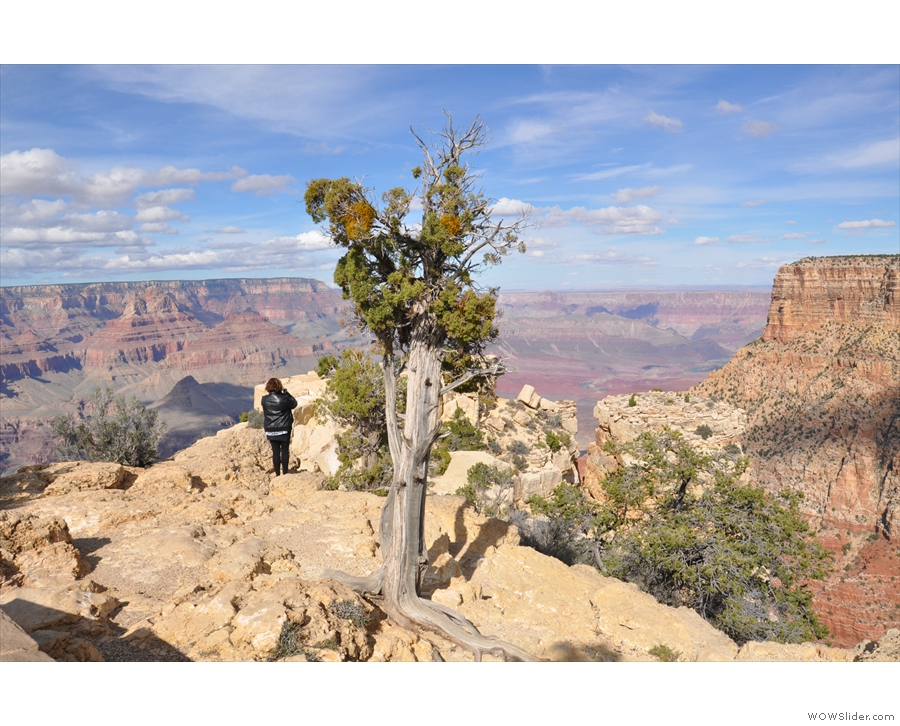 ... sweeping views of the Grand Canyon. Again, I'm staying this side of the barrier.