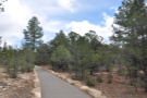 From there I set off along the Rim Trail, aka the Trail of Time...