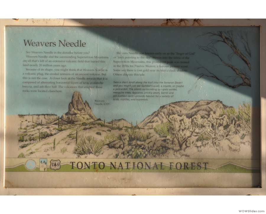 I'd pulled off the road at Weaver's Needle Vista Viewpoint, and, just like the information...