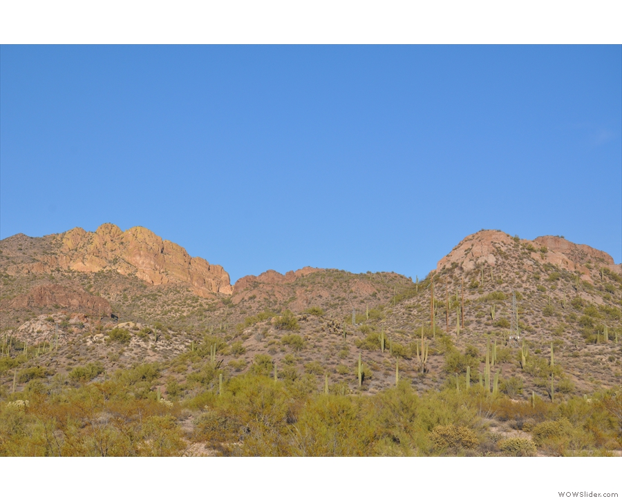 In fact, there are cacti and mountains in pretty much every direction! Back in the car...