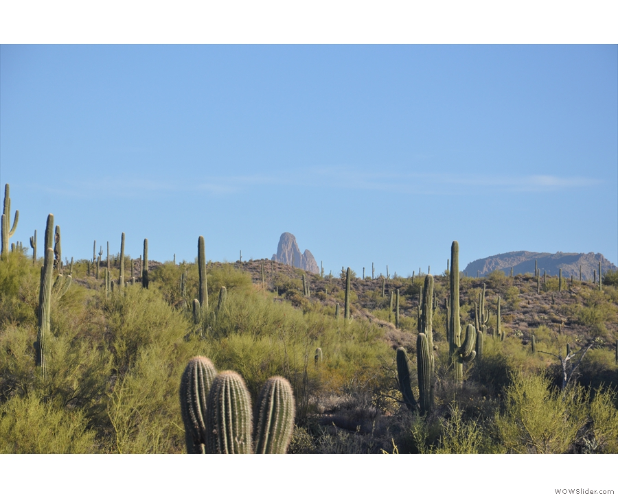 ... board says, there it is, way off on the horizon! Oh, and there are lots of cacti.