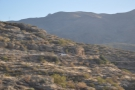 The view from the car park, looking back at the Apache Trail, with a pickup truck for scale.