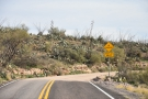 It's not joking, by the way. The pavement abruptly ends and the Apache Trail becomes...