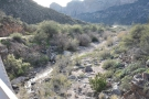 And the view downstream, looking back towards Fish Creek Canyon.