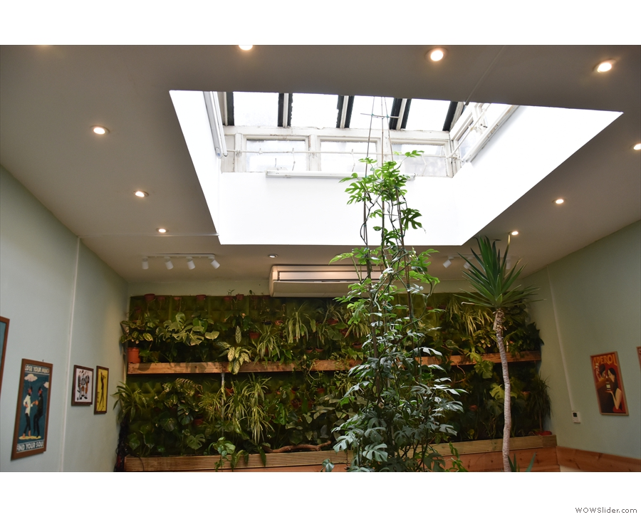 Check out that skylight though. And the green wall behind it. Such a lovely space!
