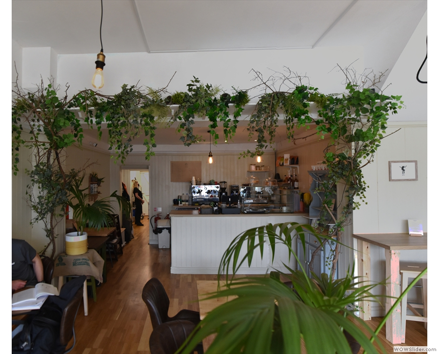 The counter is at the back, where there is more greenery.