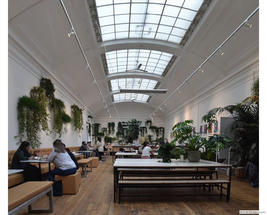 Behold! The glorious main room of Medicine New Street, with its soaring gallery ceiling!