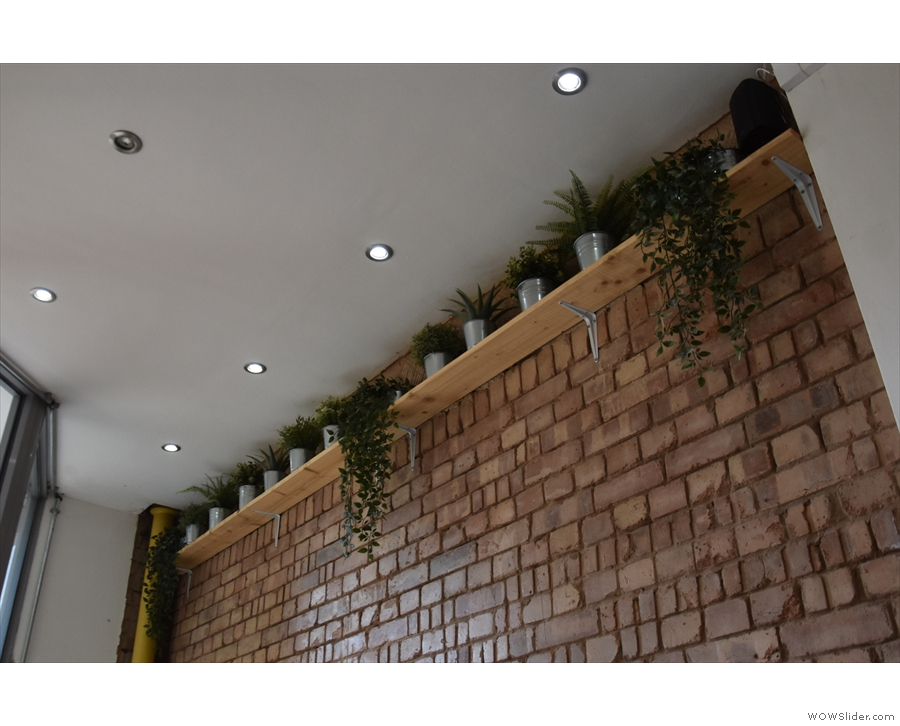 Although upstairs is small, it has wonderfully high ceilings. And plenty of plants.