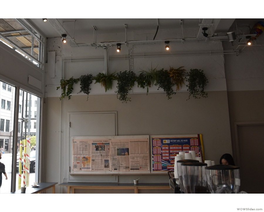 Although the decor is a little sparse, Rosslyn has some interesting features, such as...