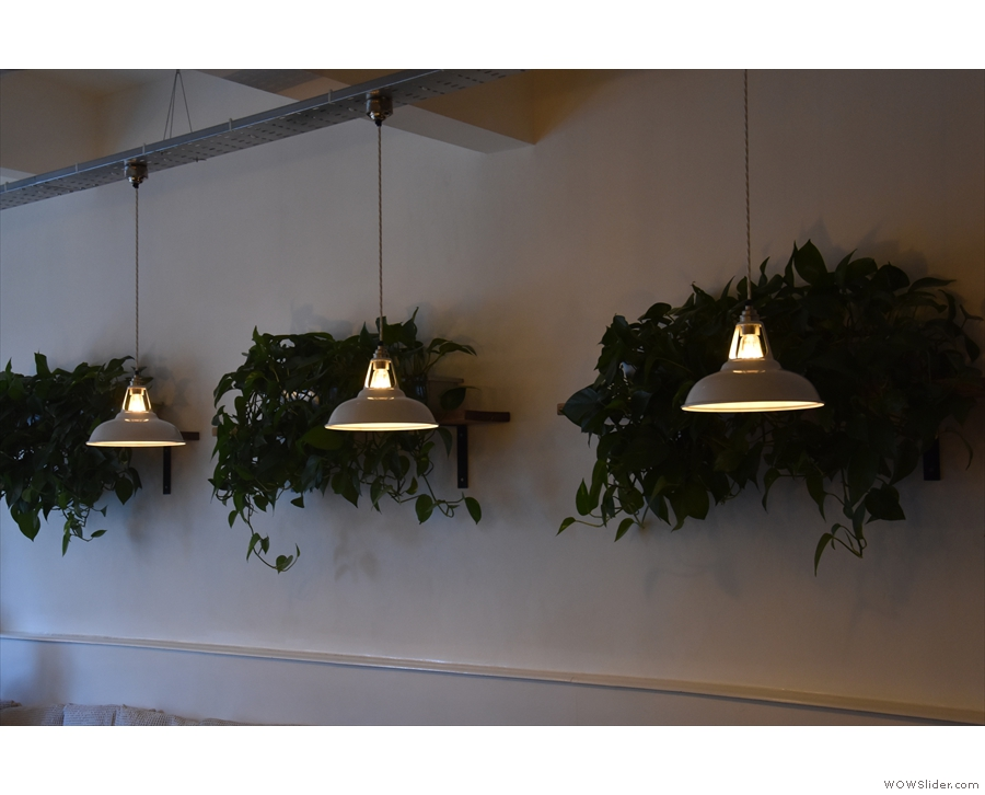 Although there's plenty of light from the front, there are plenty of light-fittings too.