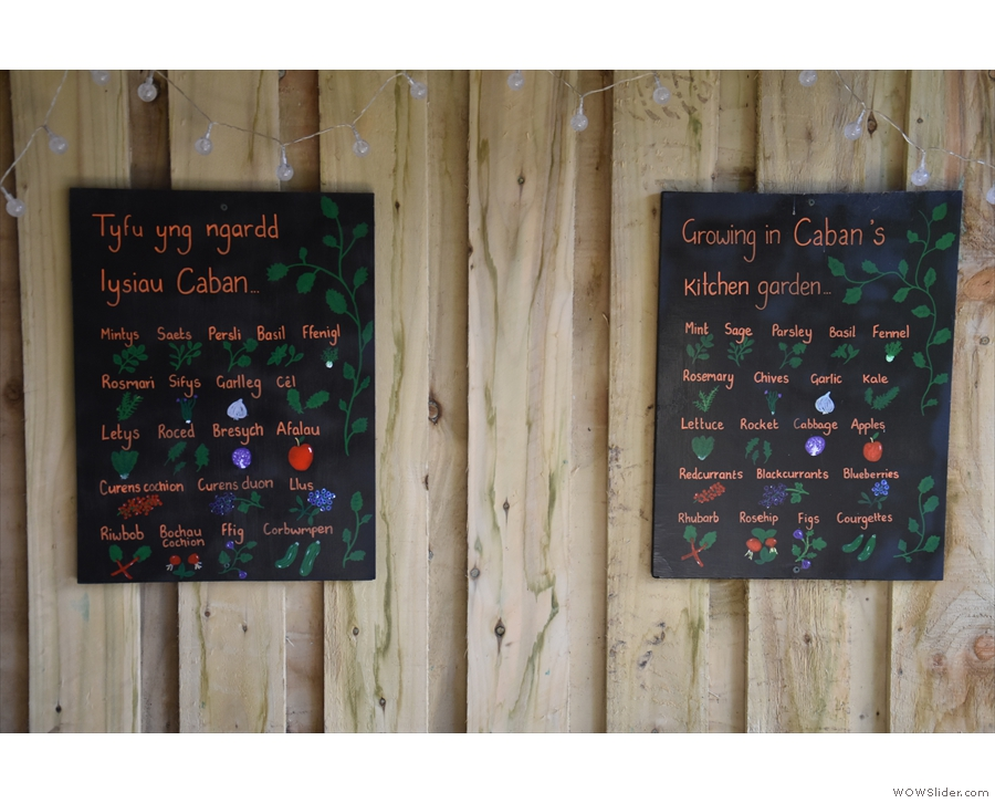 ... and has details of what's growing in Caffi Caban's kitchen garden.