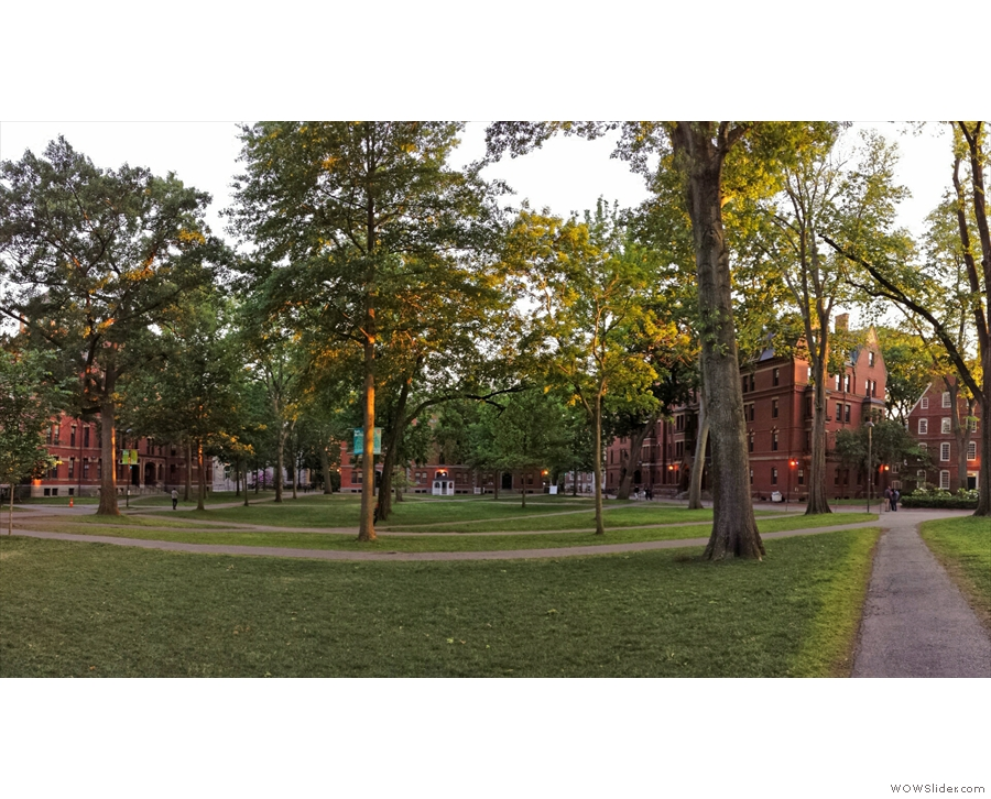 ... and in Harvard Yardi tself, a magical place at any time of day.