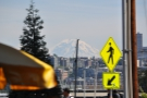 Talking of views: my favourite Seattle vista, the glorious Mt Rainier.
