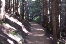 I was hiking the trail to Mirror Lake: it was clearly marked and laid out.
