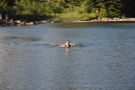 I wasn't the only one enjoying myself by the lake, but he was the only one in the lake!