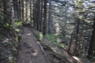 The path was steep, full of switch-backs (this is looking back the way I'd come)...