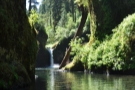 This is what he was looking at, the upper Punchbowl Falls.