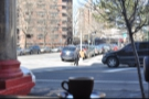 My espresso enjoys the spring sunshine in the window
