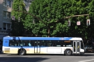 I didn't take many pictures of the buses though: too busy jumping on or jumping off them!