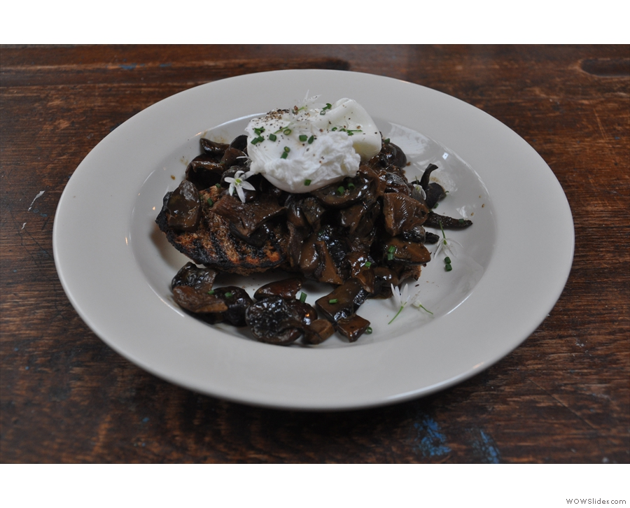I had lunch while I was there: mushroom ragu, topped with a poached egg.