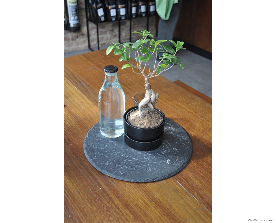 This plant is the communal table centrepiece. Each table has its own bottle of water.