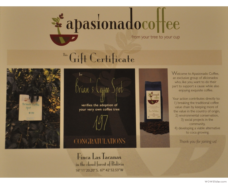 For something a little bit different, why not adopt a coffee tree from Apasioado Coffee?