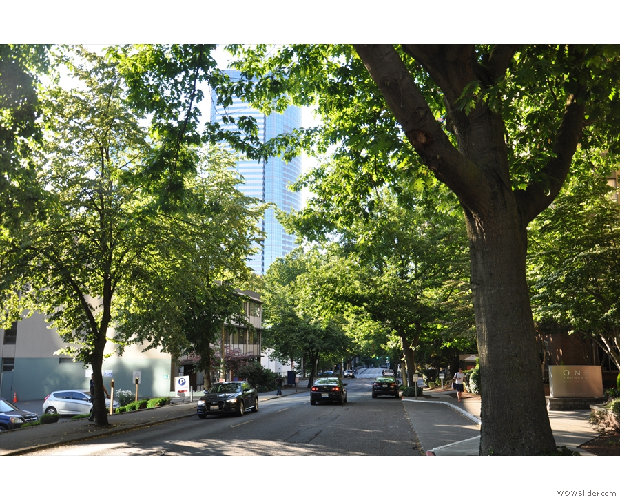 However, beyond the Interstate, and Seattle is a lovely, leafy city.