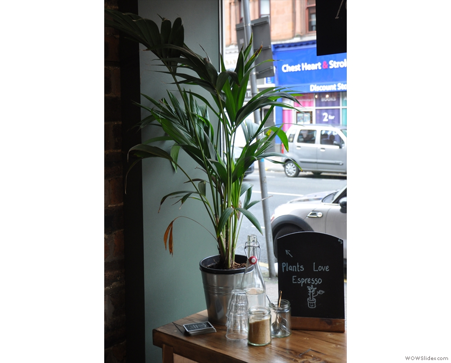 There are lots of little touches, such as this plant, promoting the recycling of coffee grounds.