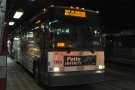 ... so it was off to New York for the day. Here's my trusty steed (the No 198 bus).