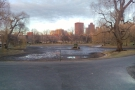 From there, I wandered over to the Boston Public Garden, next to Boston Common.